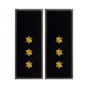 Grade Inspector Principal Politia de Frontiera gri - Insemne Oficiale IGPFR