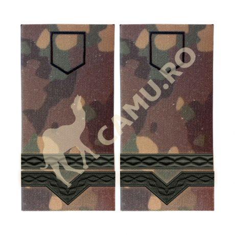 Grade Maiștri Militari Armată Clasa IV Instrucție – Selectează Arma