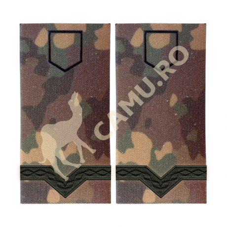 Grade Maiștri Militari Armată Clasa V Instrucție – Selectează Arma