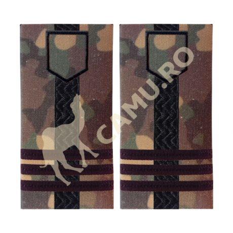Grade Ofiteri Armata Colonel Instructie – Selecteaza Arma