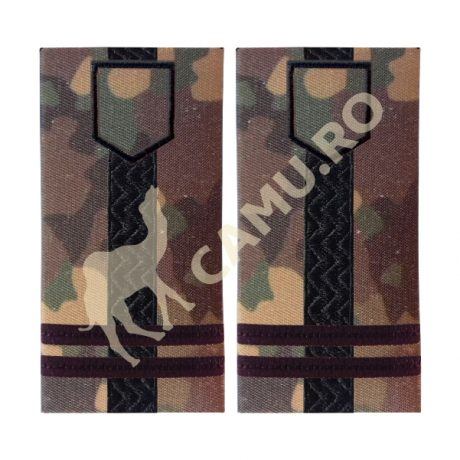 Grade Ofiteri Armata Locotenent Colonel Instructie – Selecteaza Arma