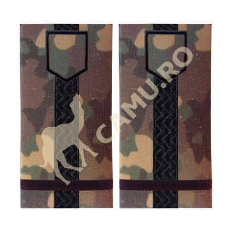Grade Ofiteri Armata Maior Instructie – Selecteaza Arma