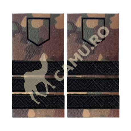 Grade Subofiteri Armata PLUTONIER ADJUTANT Instructie – Selecteaza Arma