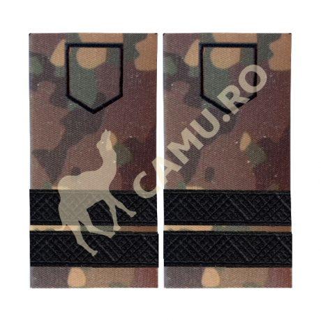 Grade Subofiteri Armata PLUTONIER Instructie – Selecteaza Arma