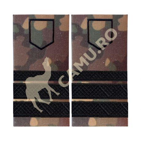 Grade Subofiteri Armata PLUTONIER MAJOR Instructie – Selecteaza Arma