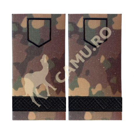 Grade Subofiteri Armata Sergent Instructie – Selecteaza Arma
