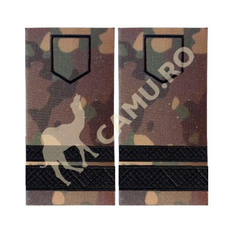 Grade Subofiteri Armata Sergent Major Instructie – Selecteaza Arma